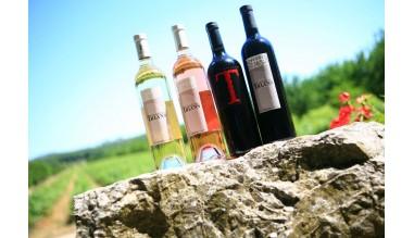 Les vins de Trians