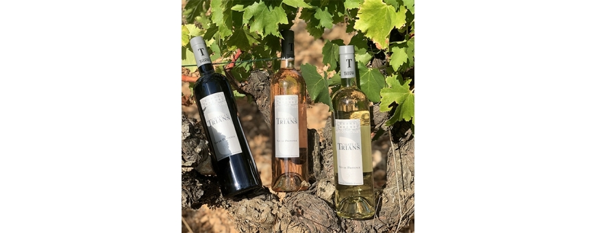 Château Trians wines