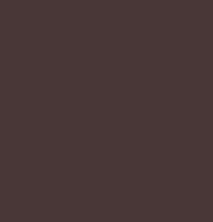 Logo Trians